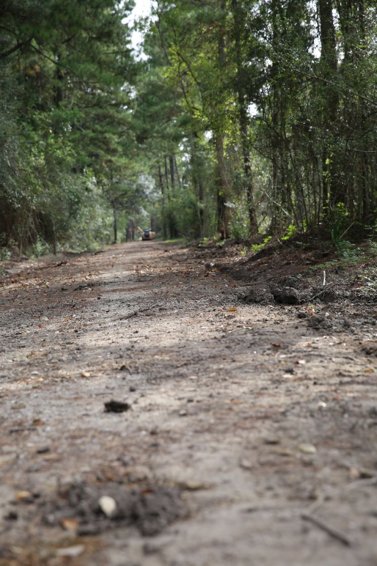 Tammany Trace Extension into Camp Salmen — Update