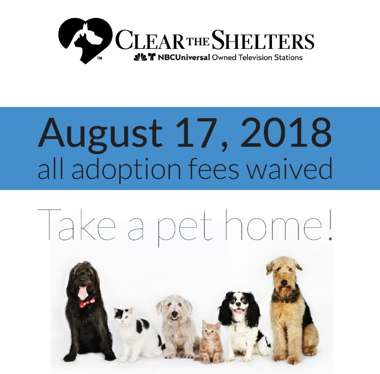 St. Tammany Parish Department of Animal Services Participates in Clear the Shelters 2019
